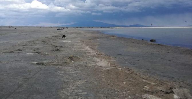 El Nihuil y Valle Grande están al 27% de su capacidad producto de la sequía