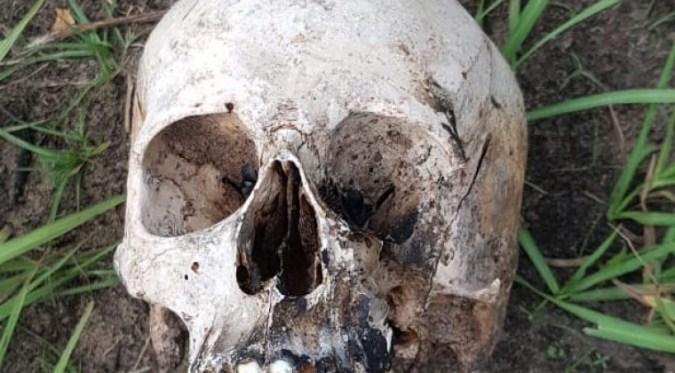San Carlos: hallaron un cráneo y otros restos óseos humanos cuando excavaban en una finca