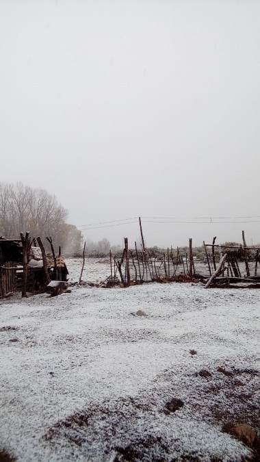 Nieve-en-Manzano-21-de-mayo-2020-foto-Maria-del-Valle-Dominguez