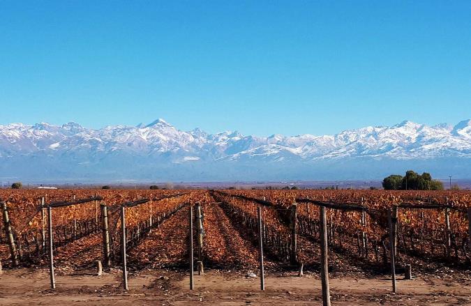 """Mendoza en el """"top five"""" de los destinos nacionales más elegidos en el Hot Sale 2020"""