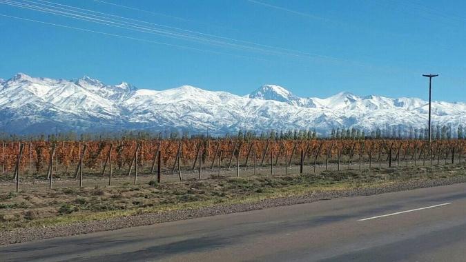 Pronóstico del tiempo: jueves agradable y con leve descenso de la temperatura en Mendoza