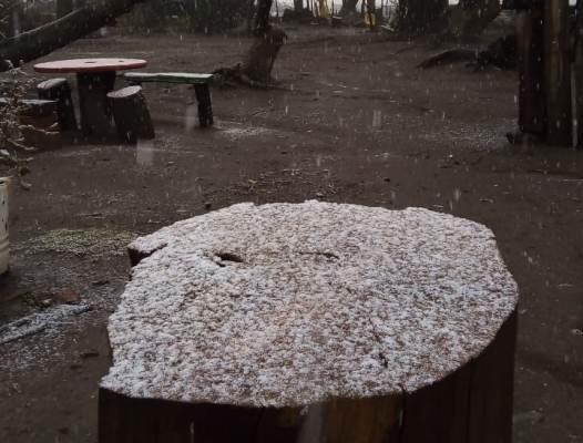 nieve-en-el-manzano-cuarta-vez-1