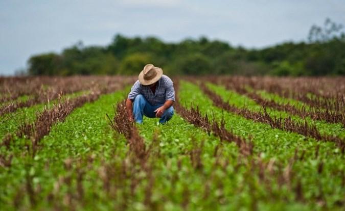 Efemérides: desde 1948, cada 2 de julio Argentina celebra el Día de la Agricultura Nacional