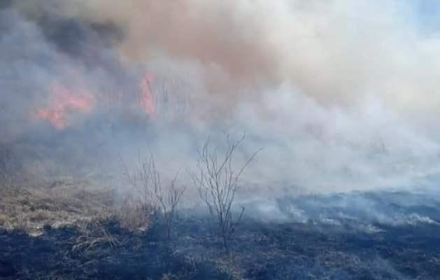 Otras decenas de hectáreas de campo incendiadas en San Carlos: cómo denunciar la quema ilegal