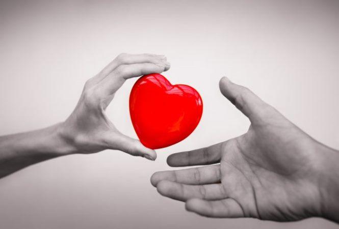 Efemérides: 14 de octubre, Día Mundial de la Donación de Órganos, Tejidos y Trasplantes
