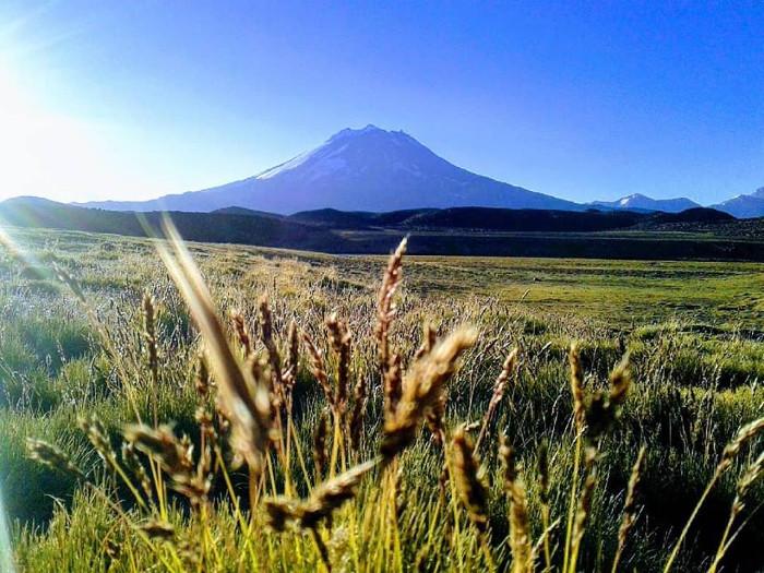 Áreas Naturales Protegidas del Valle de Uco: ¿abrirán sus puertas los paraísos de la región?