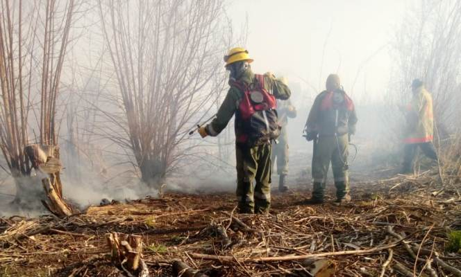 Un incendio consumió 10 hectáreas en Tunuyán y puso en peligro una vivienda