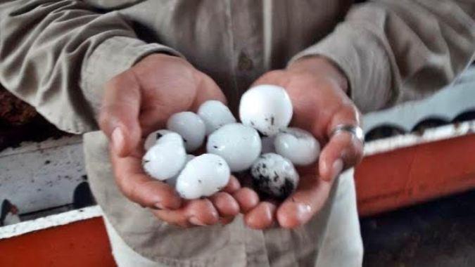Tupungato: los productores afectados por tormentas ya pueden realizar las denuncias por los daños ocasionados