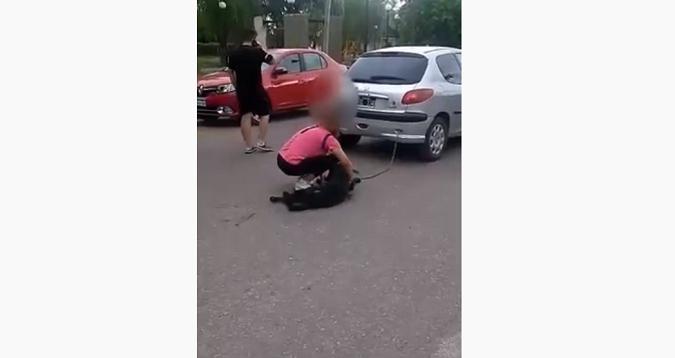 Maltrato animal en Tunuyán: una mujer ató a su perro al auto y lo arrastró varias cuadras