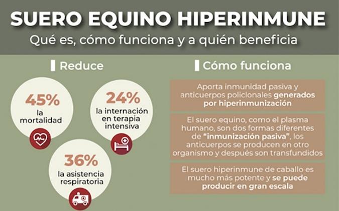 Qué es, cómo funciona y a quiénes beneficia el suero equino hiperinmune contra el Covid-19