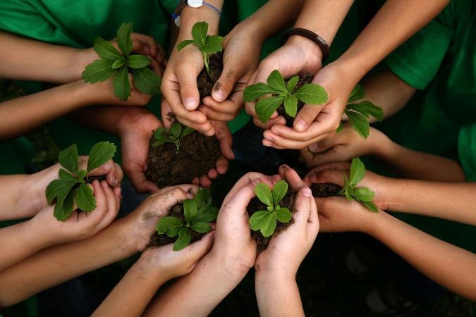 Efemérides: cada 26 de enero se celebra el Día Mundial de la Educación Ambiental