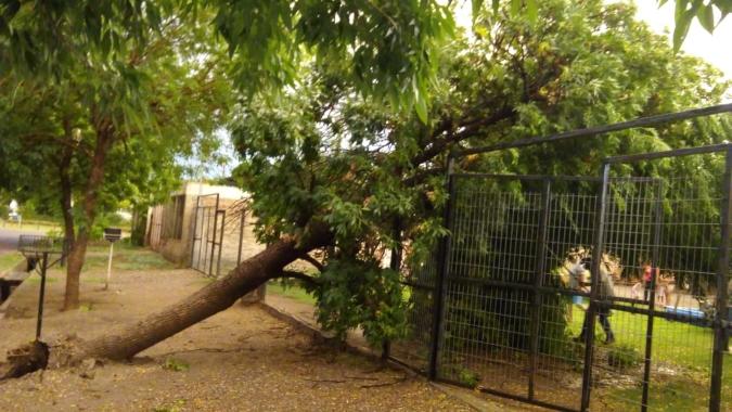 tormenta-tunuyan-enero2021-elcucodigital1
