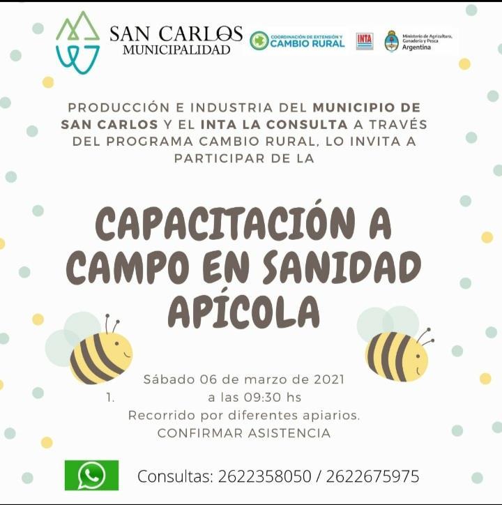 Capacitacion-sanidad-apicola