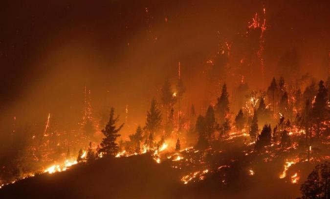 """""""San Carlos abraza a la Patagonia"""": juntan donaciones para los damnificados por los incendios"""