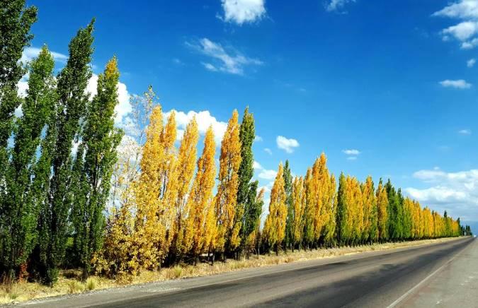 Otoño 2021: ¿Cuándo empieza la estación de los paisajes coloridos en Argentina?