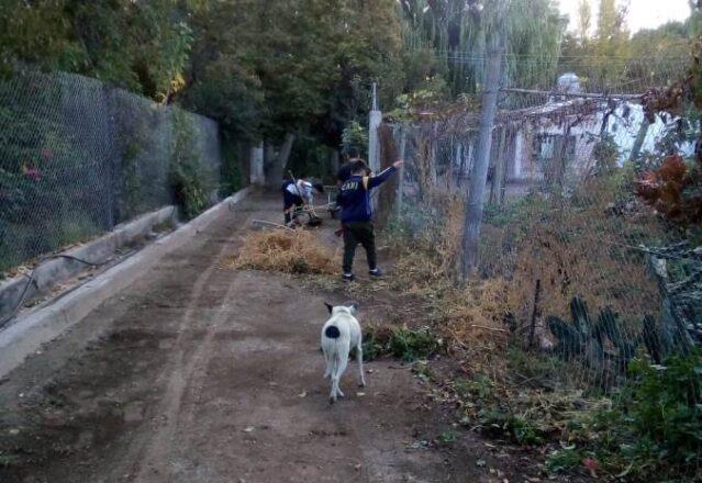 Chicos-del-barrio-Buttini-limpiando-2
