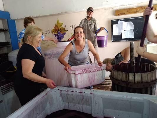mujeres-de-la-vina-trabajando