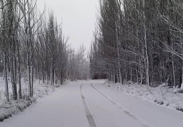 ¡Y llegó de nuevo la nieve al Valle de Uco! Zonas de Tupungato acumulan hasta 20 centímetros