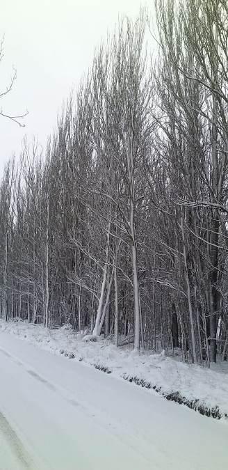 Nieve-en-Tgato-21-de-mayo