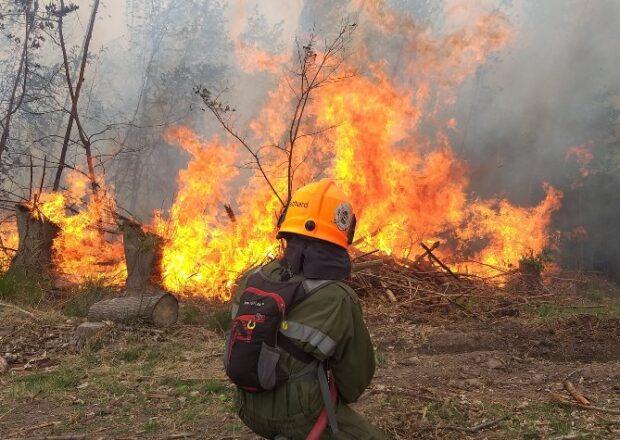 Zonda e incendios en Tunuyán - foto Bomberos Voluntarios Tyan