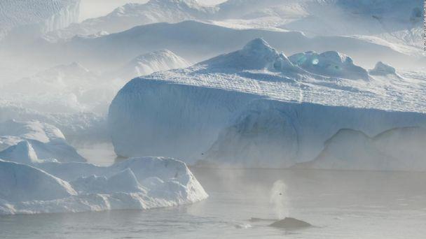El mayor iceberg del mundo se separó de la Antártida y quedó a la deriva en el mar