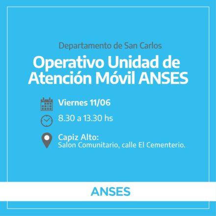 Operativo-Anses-Capiz