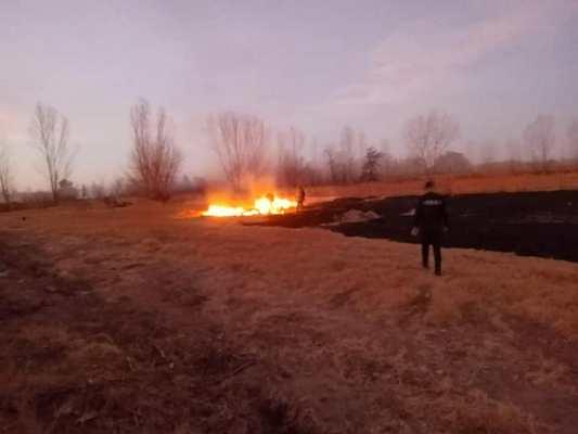 Incendio en San Carlos: Bomberos debieron sofocarlo rápidamente por la cercanía de una vivienda