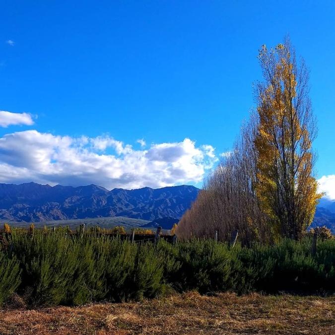 Pronóstico del tiempo: fin de semana frío con precipitaciones y heladas en Mendoza