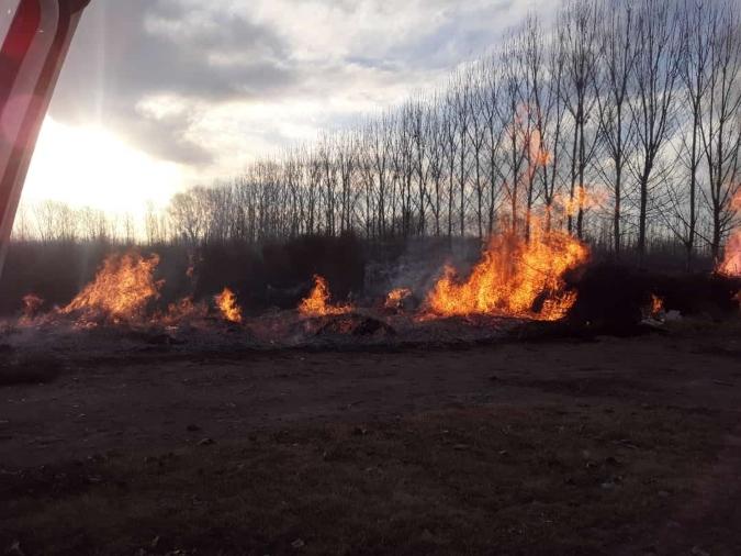 ¡Atención! Consejos para evitar incendios forestales en Mendoza