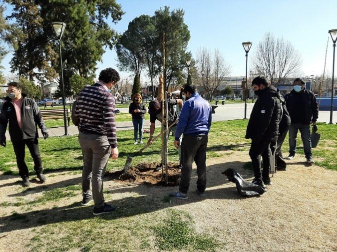 """A través de la campaña """"Plantando futuro: Canje Verde"""" se entregaron más de 670 árboles"""
