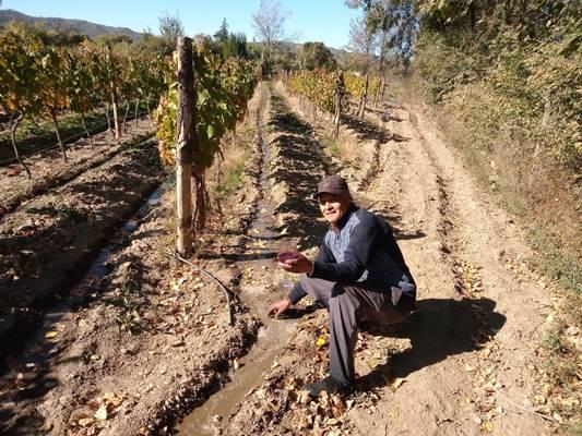 Historias de inmigrantes: llegó a los 15 años al Valle de Uco y con 70, cumplió el sueño de elaborar su vino