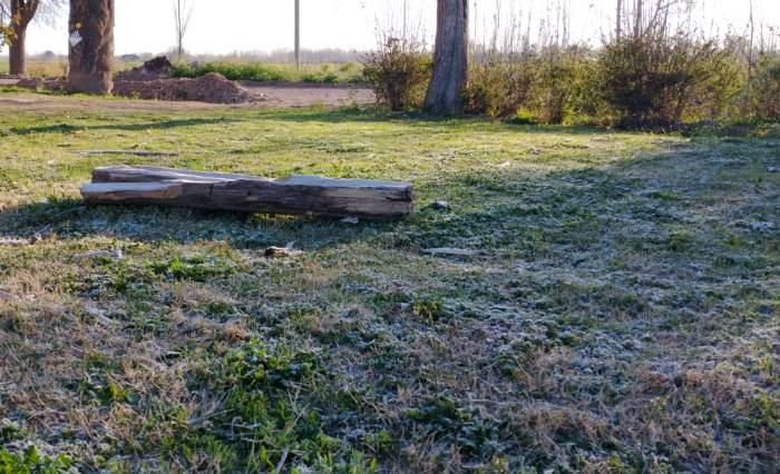Fuerte helada en Valle de Uco a poco de iniciar la primavera: mínimas de hasta -6