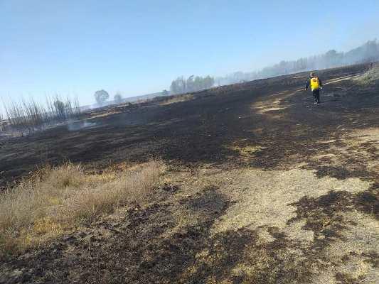 Un incendio consumió 20 hectáreas en Calise y piden a los vecinos no usar el fuego en la limpieza
