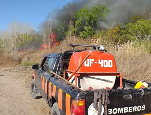 Dos incendios en San Carlos dejaron más de 100 hectáreas afectadas: cómo denunciar estos siniestros