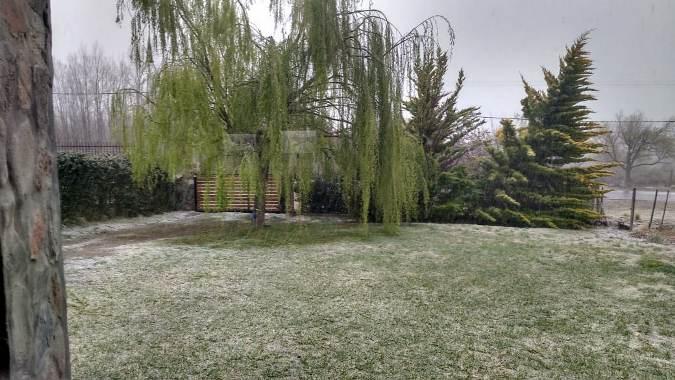 nieve-manzano-elcucodigital-13deseptiembre
