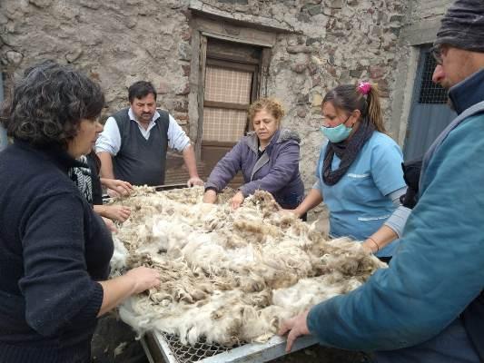 Tras 9 meses de aprendizaje, más de 45 artesanos se capacitaron en tejidos en telar con bastidor