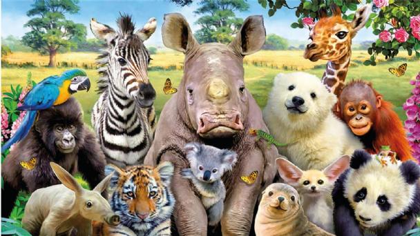 Efemérides: cada 4 de octubre se celebra el Día Mundial de los Animales