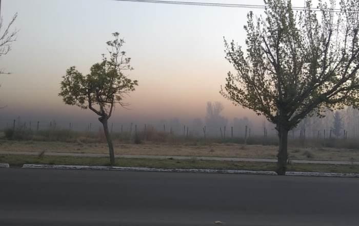 Tal y como se anticipó, hoy heló en el Valle de Uco y el humo lo hizo notar: las mínimas